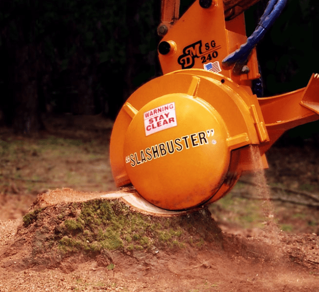 this is a picture of stump grinding tree removal carlsbad pro tree service